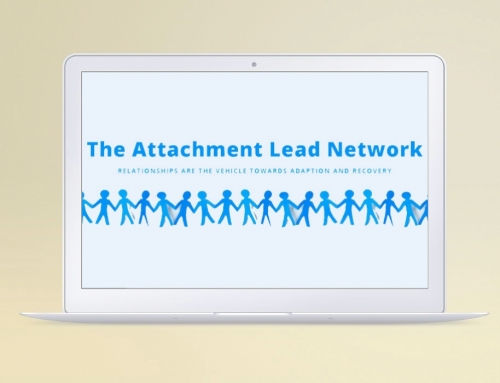 Portfolio: Attachment Lead Network